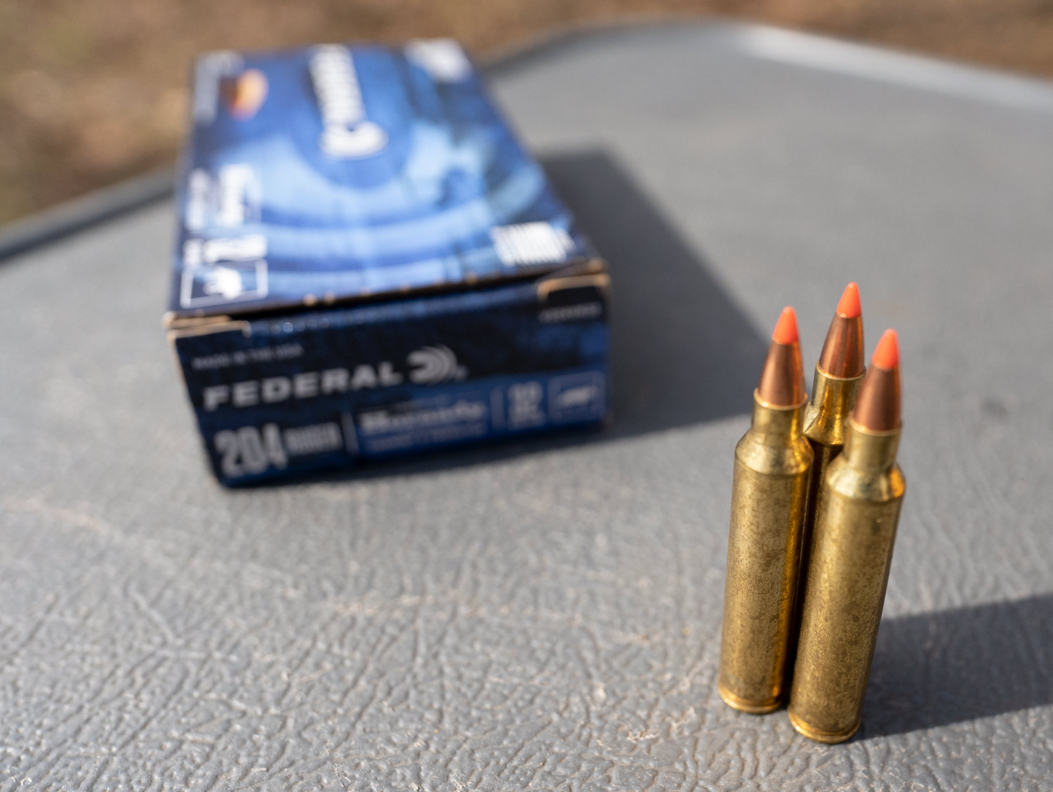 204 Ruger ammo with a polymer tip
