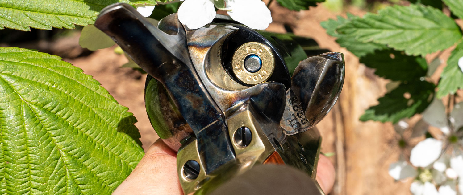 45 LC ammo loaded in a single shot revolver