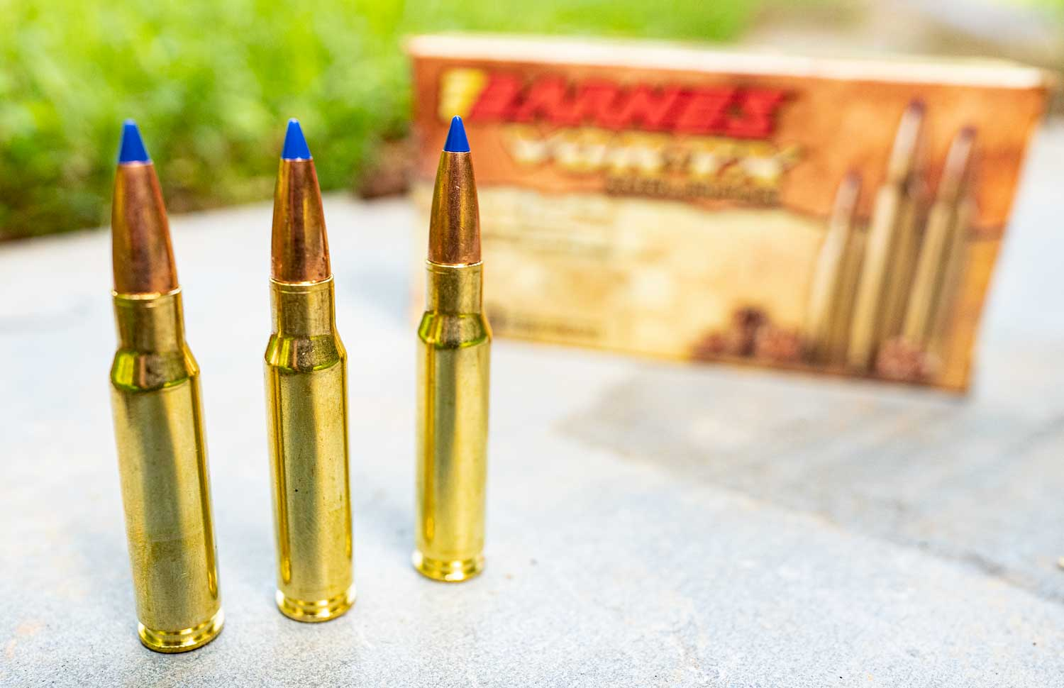 Barnes TTSX bullets and ammo used by hog hunters