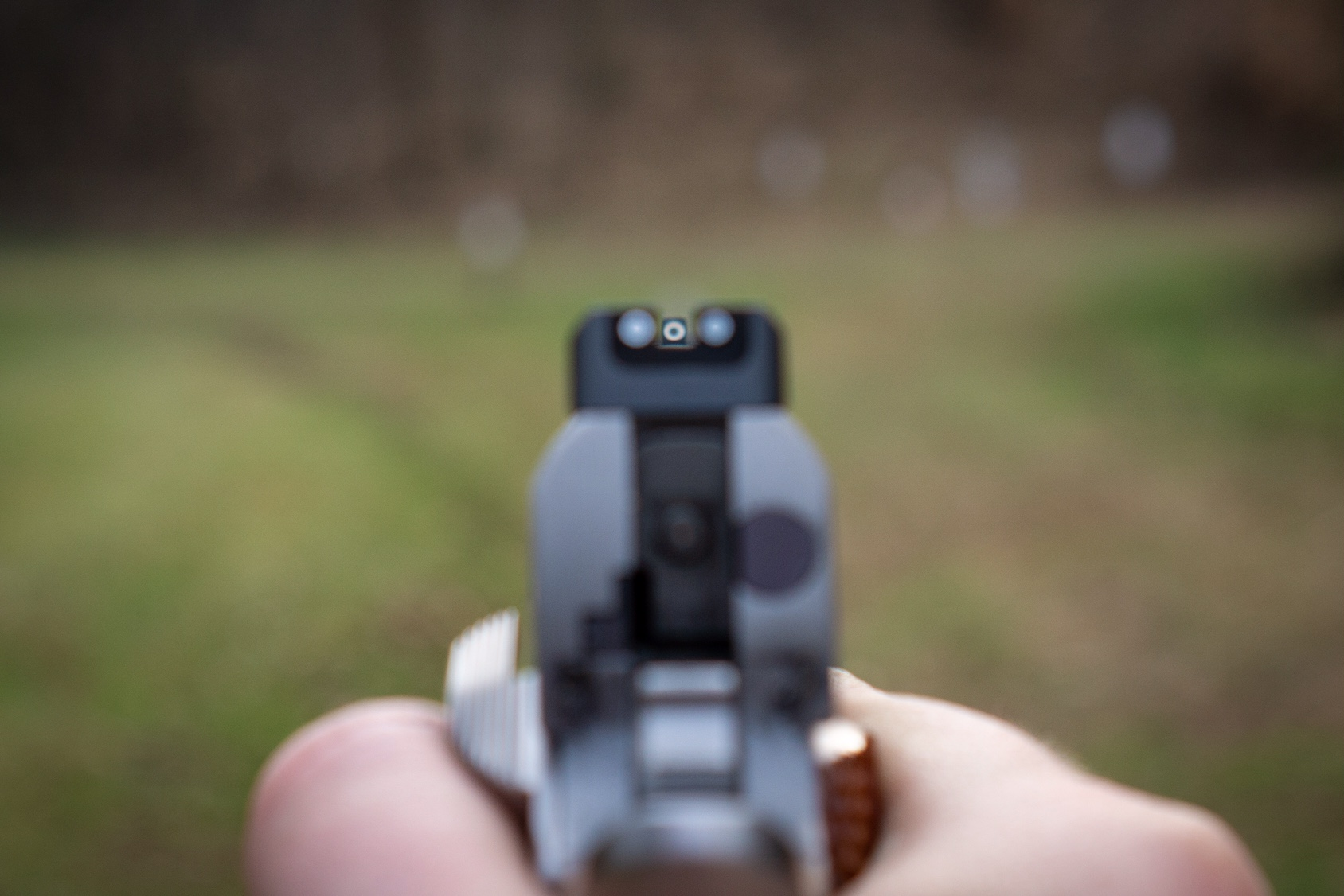 Looking downrange through Dan Wesson 1911 Sights