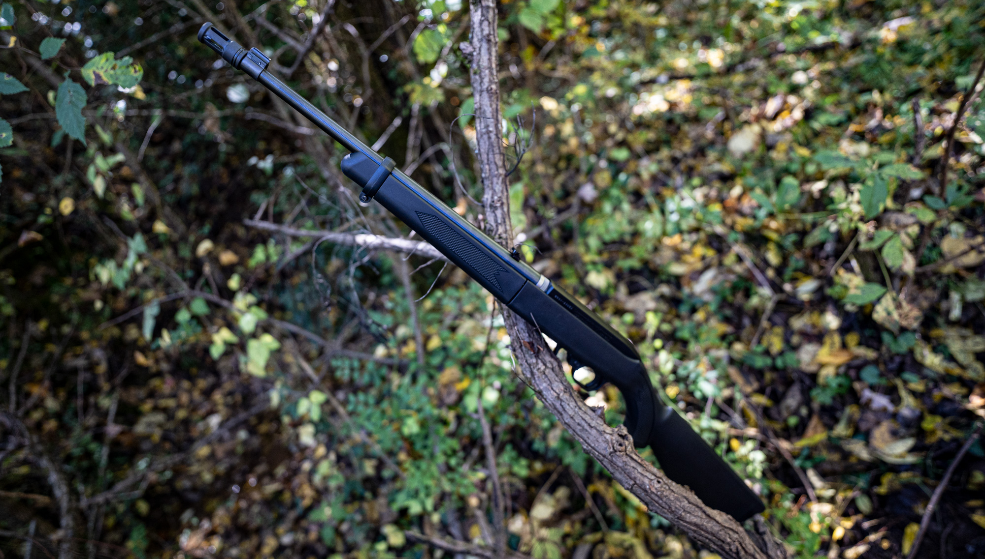 The Ruger 10-22, a very popular first rifle option for American shooters