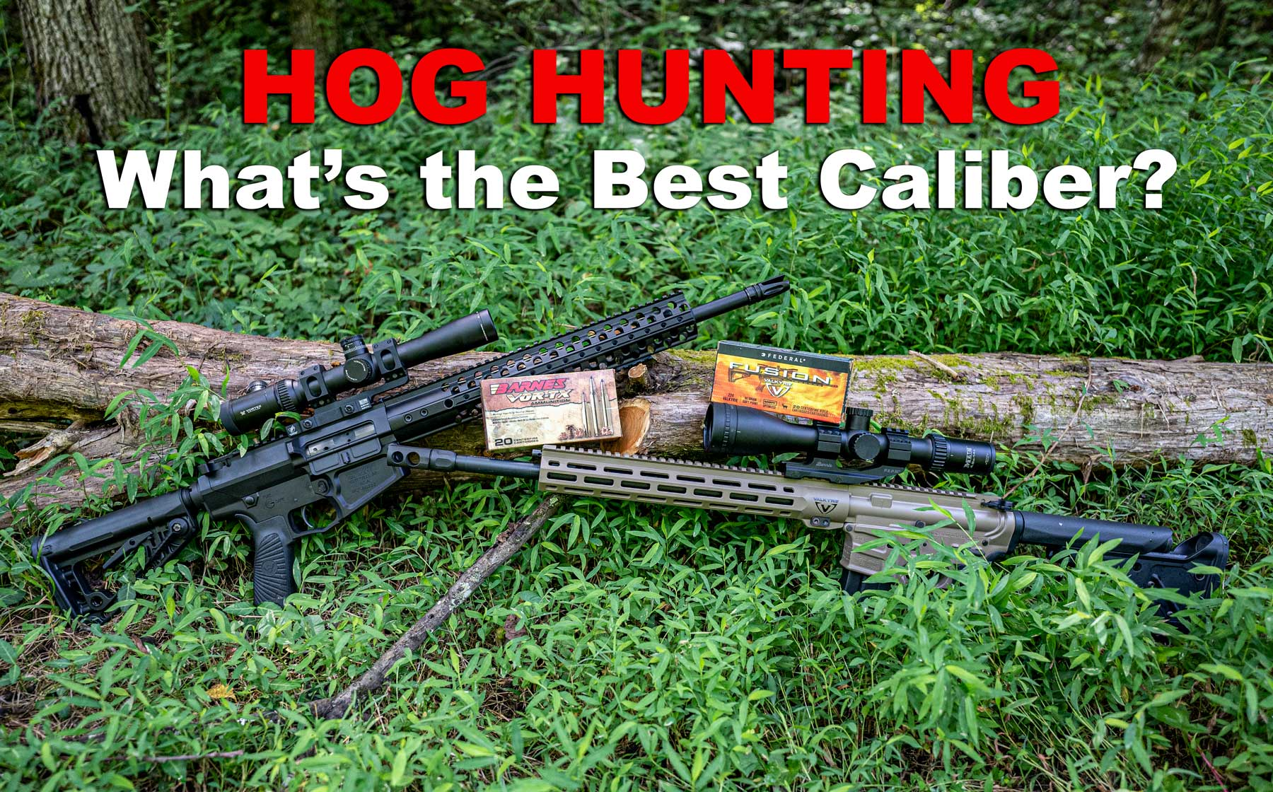 two of the best calibers for hog hunting in the woods
