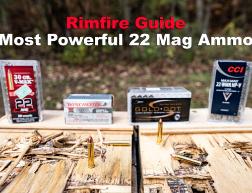 Most Powerful 22 Mag Ammo