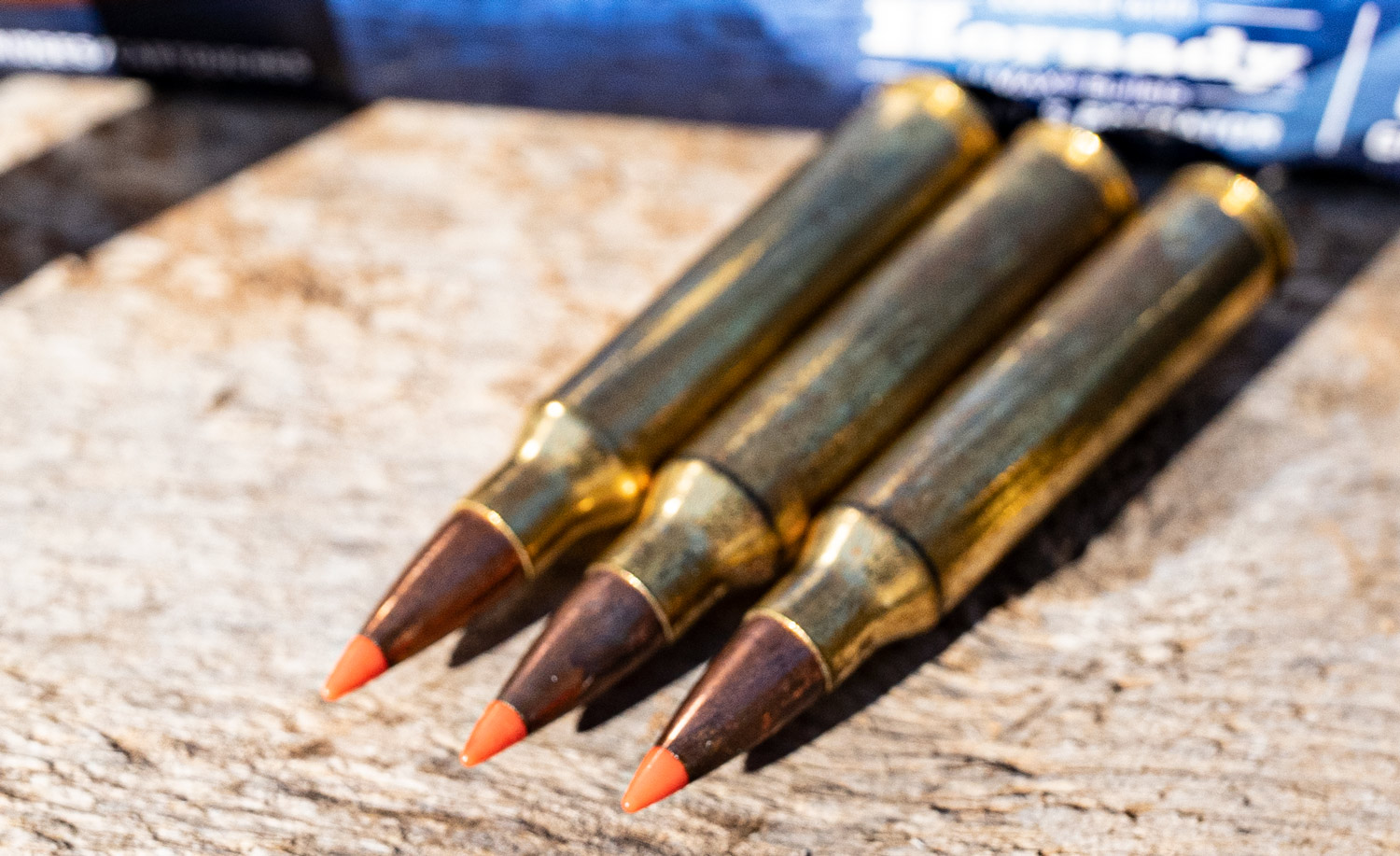 a close up of poly tipped ammo made by Hornady