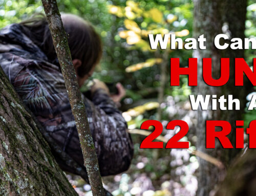 What Can You Hunt With A 22?