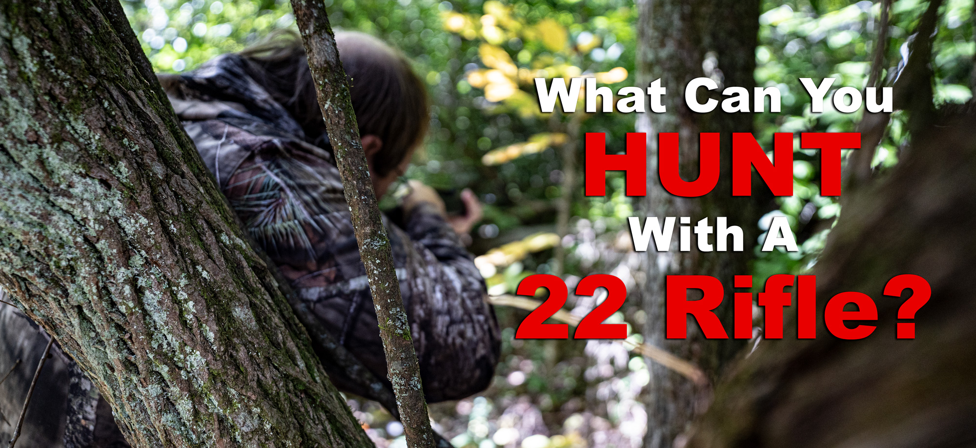 what can you hunt with a 22 rifle in the woods?